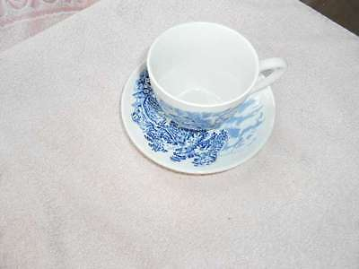 Enoch Wedgwood Countryside Cup & Saucer Blue England