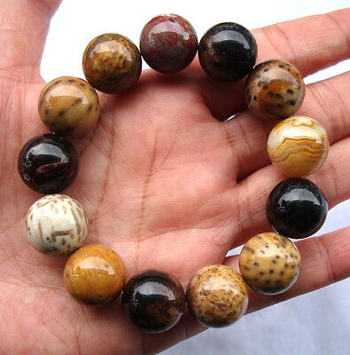 Natural Coconut Root Fossil Round Beads 16mm