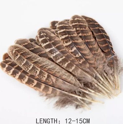 5pcs Natural Female Pheasant Feathers 12-15cm DIY Craft Wedding Millinery Decor