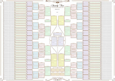 Family Tree Chart - 10 Generation bow tie chart in Pastel Colours Rolled