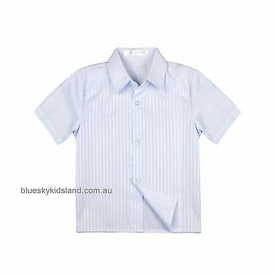 NEW Boys Short Sleeves Shirt Kids Formal Shirt Cotton Size 000-6 Blue (Stripes)