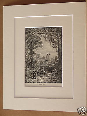 ENGLISH HOP GARDEN ANTIQUE DOUBLE MOUNTED ENGRAVING FROM c1890 PUBLICATION 10X8