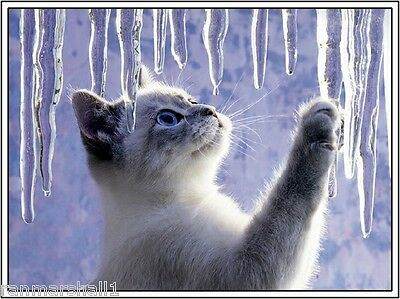 4Pak Kitten Cat Christmas Icicles Greetings Stationery Notecards / Envelopes