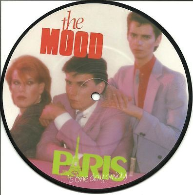 Single / THE MOOD / PICTURE VINYL / LIMITED / RARITÄT /