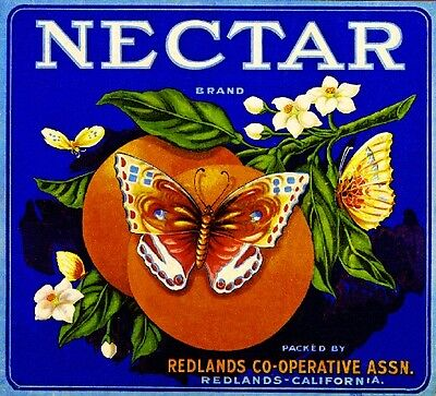 Redlands Nectar Butterfly Orange Citrus Fruit Crate Label Art Print