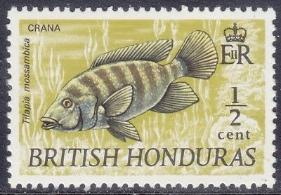 British Honduras Belize 1969 - Pesci - Fish - C. 1/2 - Mh