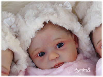 REBORN DOLL KIT ** Billie Donnelly** Brand New baby by Phil Donnelly Babies