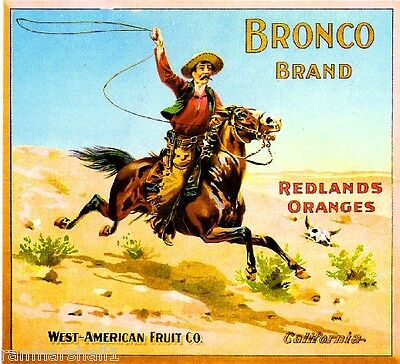 Redlands San Bernardino County Bronco Orange Citrus Fruit Crate Label Art Print