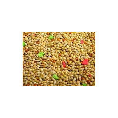 Willsbridge Supreme Budgie Seed Mix 20kg Foods - Bird Aviary - Food