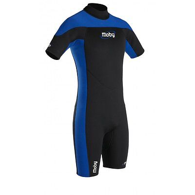 Palm Mens Moby 3mm Shorty Wetsuit ML & L only