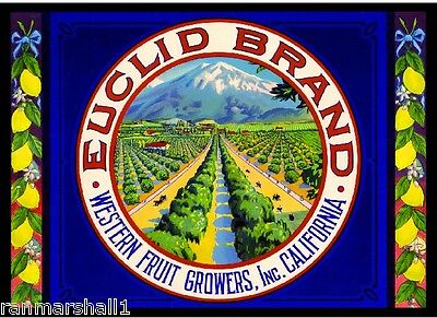 Upland California Euclid Old Mt Baldy Lemon Citrus Fruit Crate Label Art Print