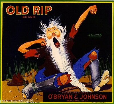 Redlands Old Rip Van Winkle Orange Citrus Fruit Crate Label Art Print