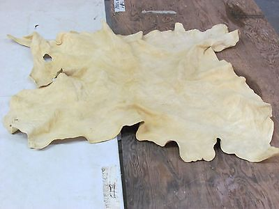 "Traditional Tanned Deer Hide  Fine Light Color   Soft Sew Prefect 39""x36"""