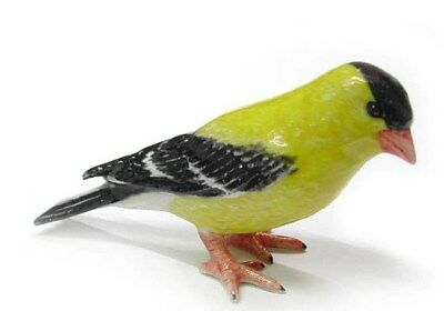 R184 - Northern Rose Minature- American Goldfinch