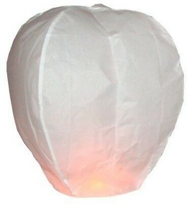 Chinese Flying Sky Lantern Eco Friendly Pack of 2 Lanterns Celebrate Party Fun