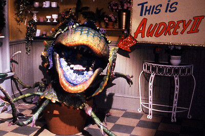 Little Shop Of Horrors 24X36 Poster Print