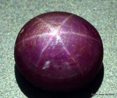20.91 ct Untreated Star Ruby Gemstone Unbehandelt Stern Rubin Edelstein Rubino