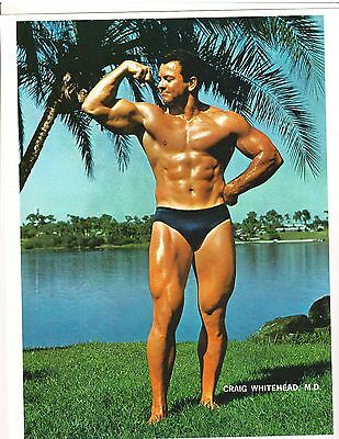 Bodybuilder Dr Craig Whitehead Bodybuilding Muscle Photo Color