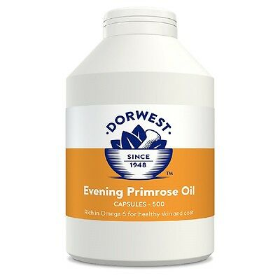 Dorwest Evening Primrose Oil Capsules x 500, Premium Service, Fast Dispatch