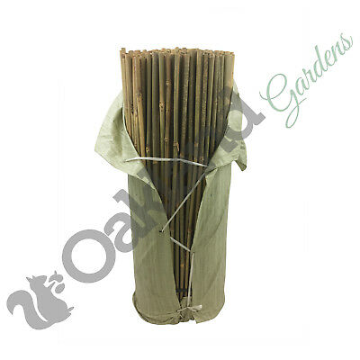 20 X 3Ft / 90Cm Thick Bamboo Canes 14-16Mm Tonkin Bamboo Strong New