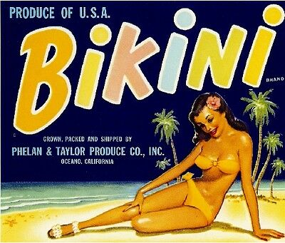 Oceano California Bikini Girl Vegetable Crate Label Art Print