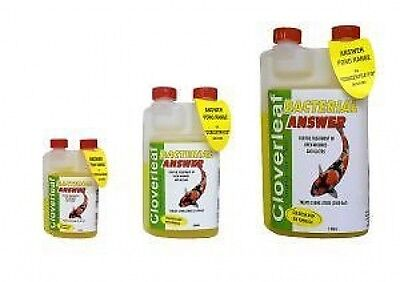Cloverleaf Bacterial Answer for Healthy Pond Filtration 250ml