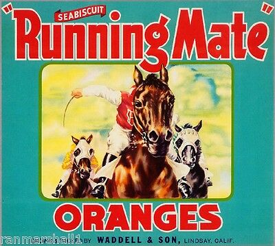 Lindsay Seabiscuit Running Mate Horse #2 Orange Citrus Fruit Crate Label Print