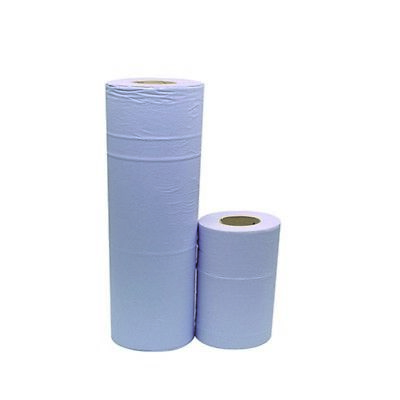 2Work Blue 2-Ply Hygiene Roll 10 Inch (Pack of 24) HR2240DS