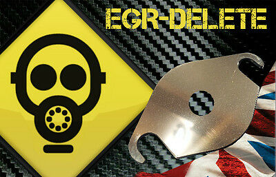 EGR blanking plate PEUGEOT CITROEN FORD Volvo 2.0 16V HDI TDCi  With Hole!