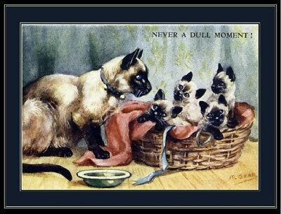 English Print Mother Siamese Cat Kitten Cats Kittens Pet Art Poster Picture