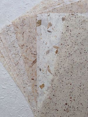 Earth Tone 20 Sheets of Mixed Dried Leaves, Thin Saa Mulberry Paper Gift Wrap