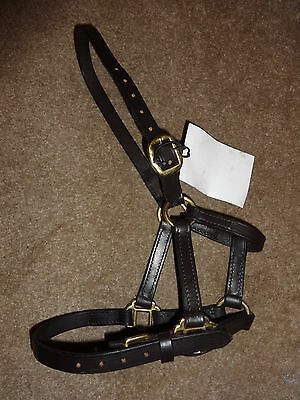 Bargain!! New Soft Leather Halter Headcollar - Mini Pony Mini Shetland Or Foal