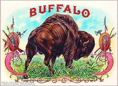 1900 Buffalo Vintage Cigar Box Inner Tobacciana Label Advertisement Art Print
