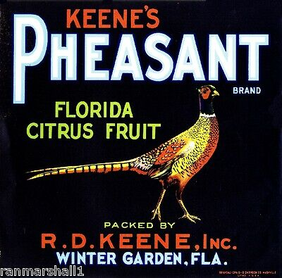 Winter Garden Florida Pheasant Bird Orange Citrus Fruit Crate Label Art Print