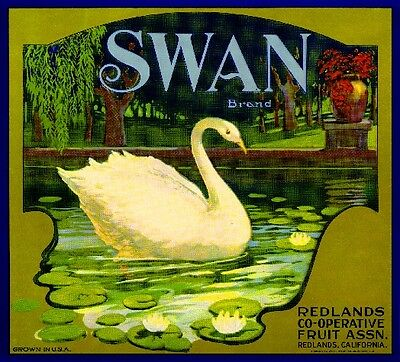 Redlands San Bernardino Swan #1 Bird Orange Citrus Fruit Crate Label Art Print
