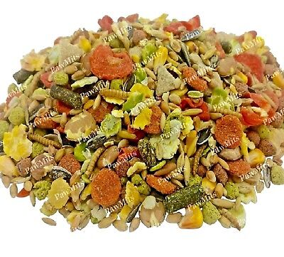 RAT & MOUSE SUPREME - Animal Pet Food Fruit Mix Treat Mealworm Natural Herb Feed