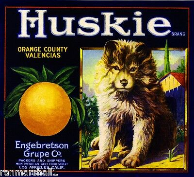 Los Angeles Siberian Husky Huskie Dog Orange Citrus Fruit Crate Label Art Print