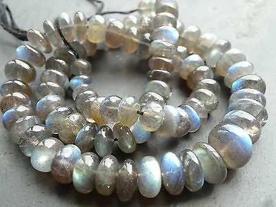 "HAND SHAPED LABRADORITE RONDELLE BEADS, graduated 7mm - 13.5mm, 18"", 86 beads"