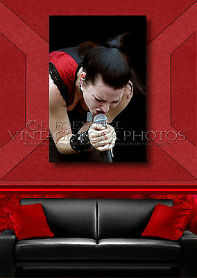 Amy Lee, Evanescence 40x60 inch Poster Size Photo Exclusive Pro Studio Print L32