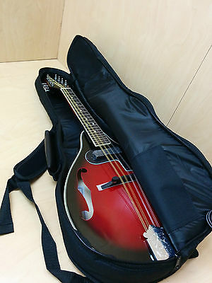Smoky Mountain A-style Electric Mandolin + Free deluxe padded bag SM62EBCS