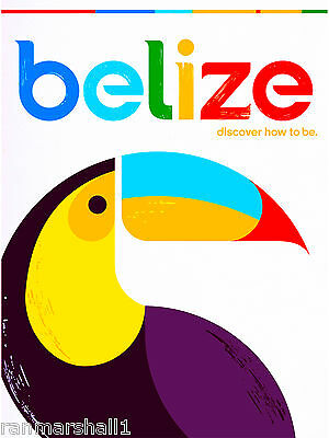 Belize Toucan Bird Central America Caribbean Travel Poster Advertisement Print