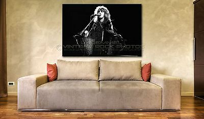 Stevie Nicks Poster Fleetwood Mac 20x30 in Photo '83 Wildheart Tour Concert L14