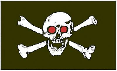 Large 3' x 5. High Quality 100% Polyester Pirate Red Eye Flag - Free Shipping