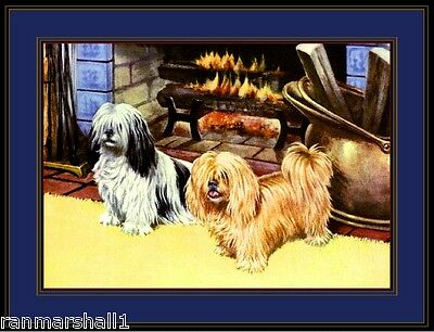 English Poster Print Shih Tsu Llaso Apso Dog Dogs Puppies Puppy Art Picture