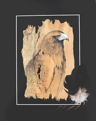 WEDGED TAILED EAGLE- REAL FEATHERS- SIGNED-Bark Art by John Gray