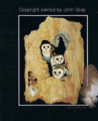 BARN OWLS with REAL FEATHERS - SIGNED - Unique Bark Art by John Gray