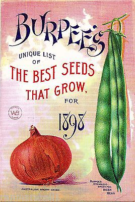 Burpee's Best Vintage Vegetables Seed Packet Catalogue Advertisement Poster