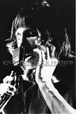Roger Waters, Pink Floyd Photo 8x12 or 8x10 inch Live '70s Concert Pro Print 23