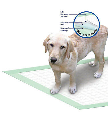 100 x Large Puppy House Training Dog/Cat Pads 60cm x 54cm Non Slip Back