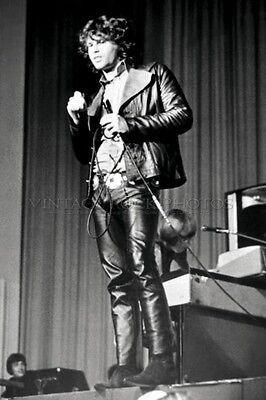 Jim Morrison, The Doors Photo 8x10 or 8x12 inch Live 60's Concert Pro Print 33